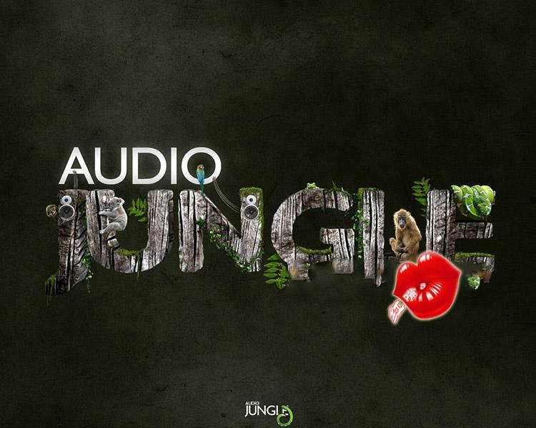 37GBAudio Jungle超级音乐音效库1-54辑AE片头模板音乐合集包